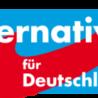 Volební úspěch Alternativy pro Německo vyvolává velké obavy