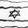 Tisíce přeživších šoa žijí v Izraeli pod hranicí bídy