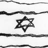 Co říká statistika o Izraeli v roce 2016?